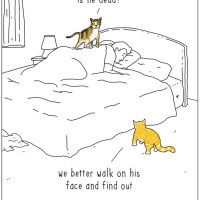 Gr8at: Hilarious Animal Cartoons by They Can Talk