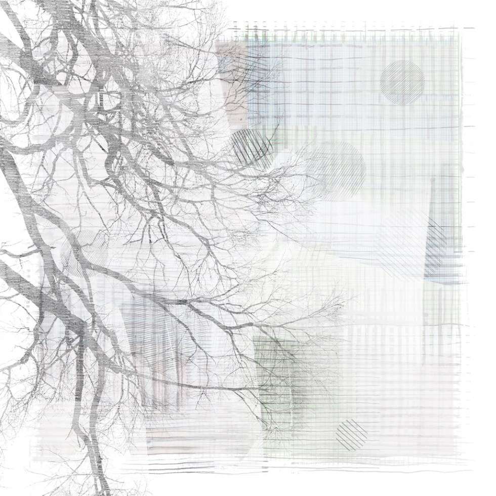 ApeiroPattern generative art Genuary 2021 Day 10 Run 02 by Alex Russell (full image)