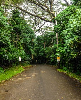 Manoa Falls Entrance