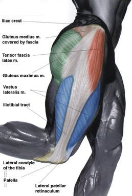 tensor-fasciae-latae-trigger-point-pain-pattern