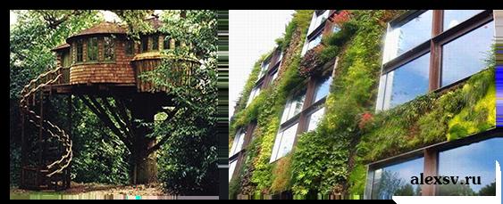 Примеры экологического дизайна
