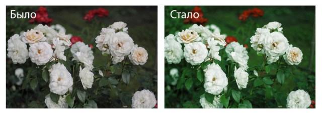 Выборочная_коррекция_цвета_в_фотошопе_Viborochnaya_korrekciya_cveta_v_fotoshope_17