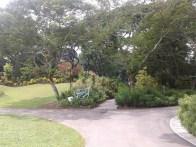 Foliage Garden. Лиственный сад.