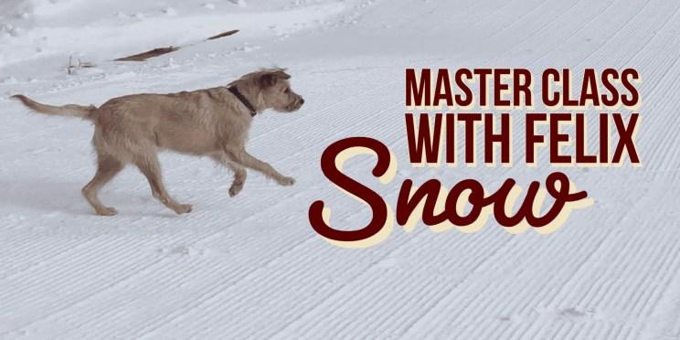 MasterClass Snow hiREZ_2