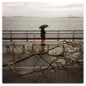 Statue Of Liberty From Battery Park Michael Christopher Brown