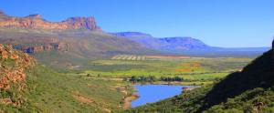 vredendal valley beauty