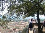 Terraza arbolada en lo alto de la Torre Guinigi (Lucca, Toscana, Italia)