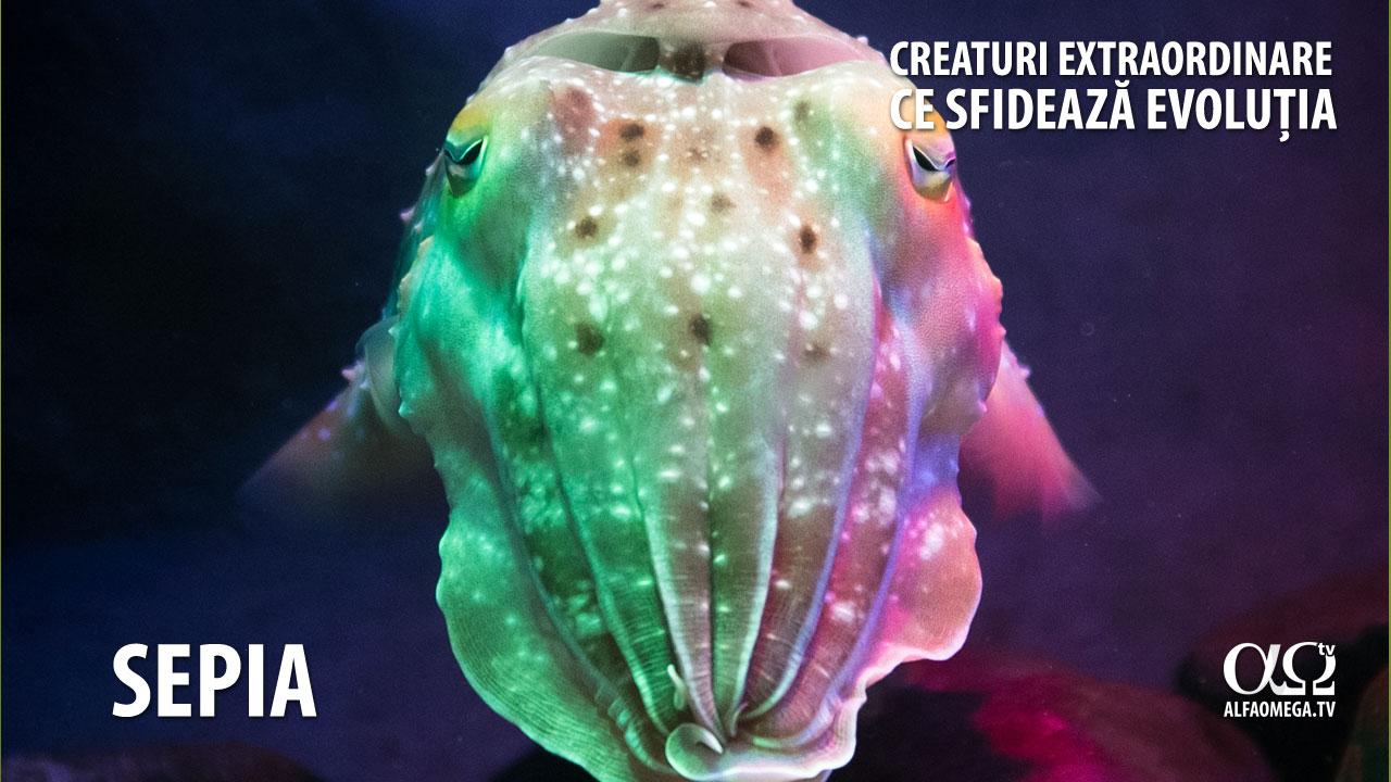 creaturi extraordinare 3 sepia2