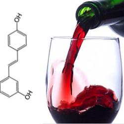 1500 botellas de vino en 1 comprimido de Resveratrol