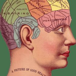 El Futuro de la Inteligencia