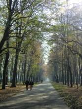 Parque de Monza