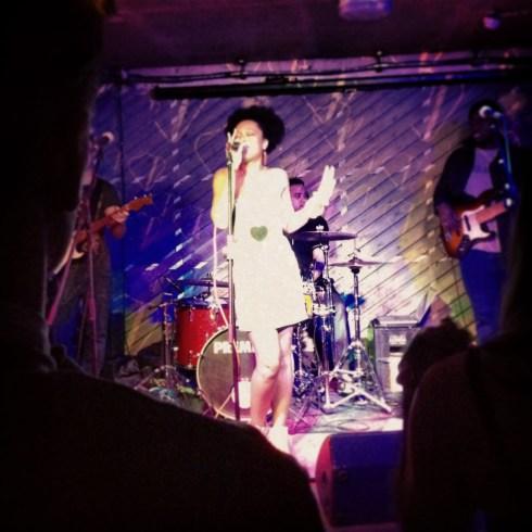 shea singer live notting hill arts club london