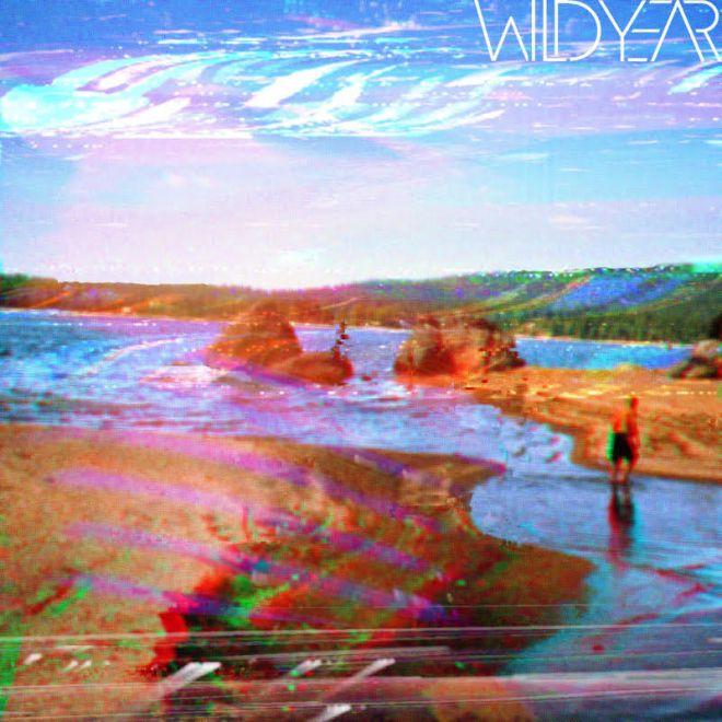 wild year