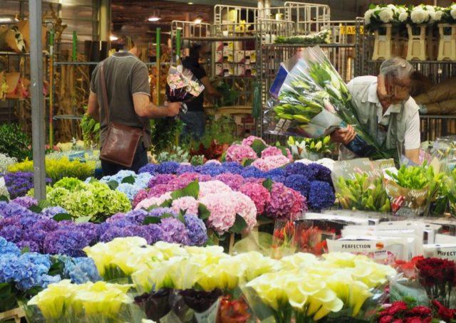 MIN Rungis pavillon des fleurs et plantes