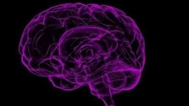 Photo of VIH puede afectar al cerebro pese al tratamiento