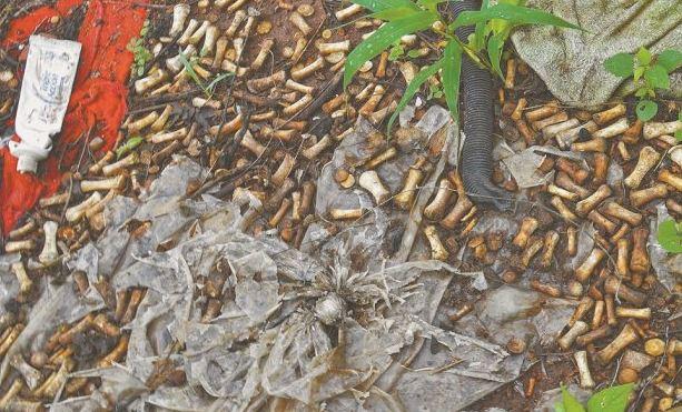 huesos de manos en un terreno de Sinaloa