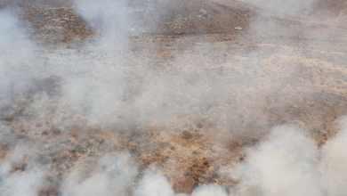 Incendios cobran otra vida en Ensenada