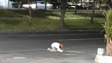 Photo of Hombre sin hogar llora muerte de su perrito