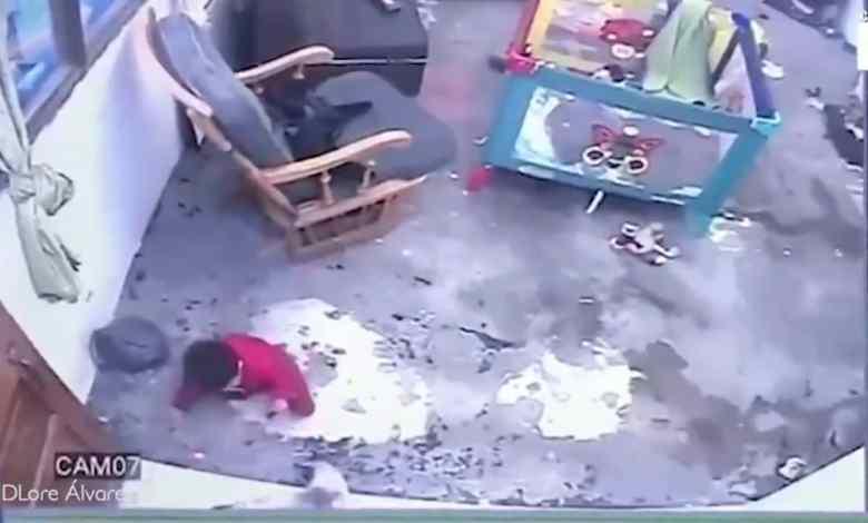 Photo of Gato salva a bebé de caer por las escaleras