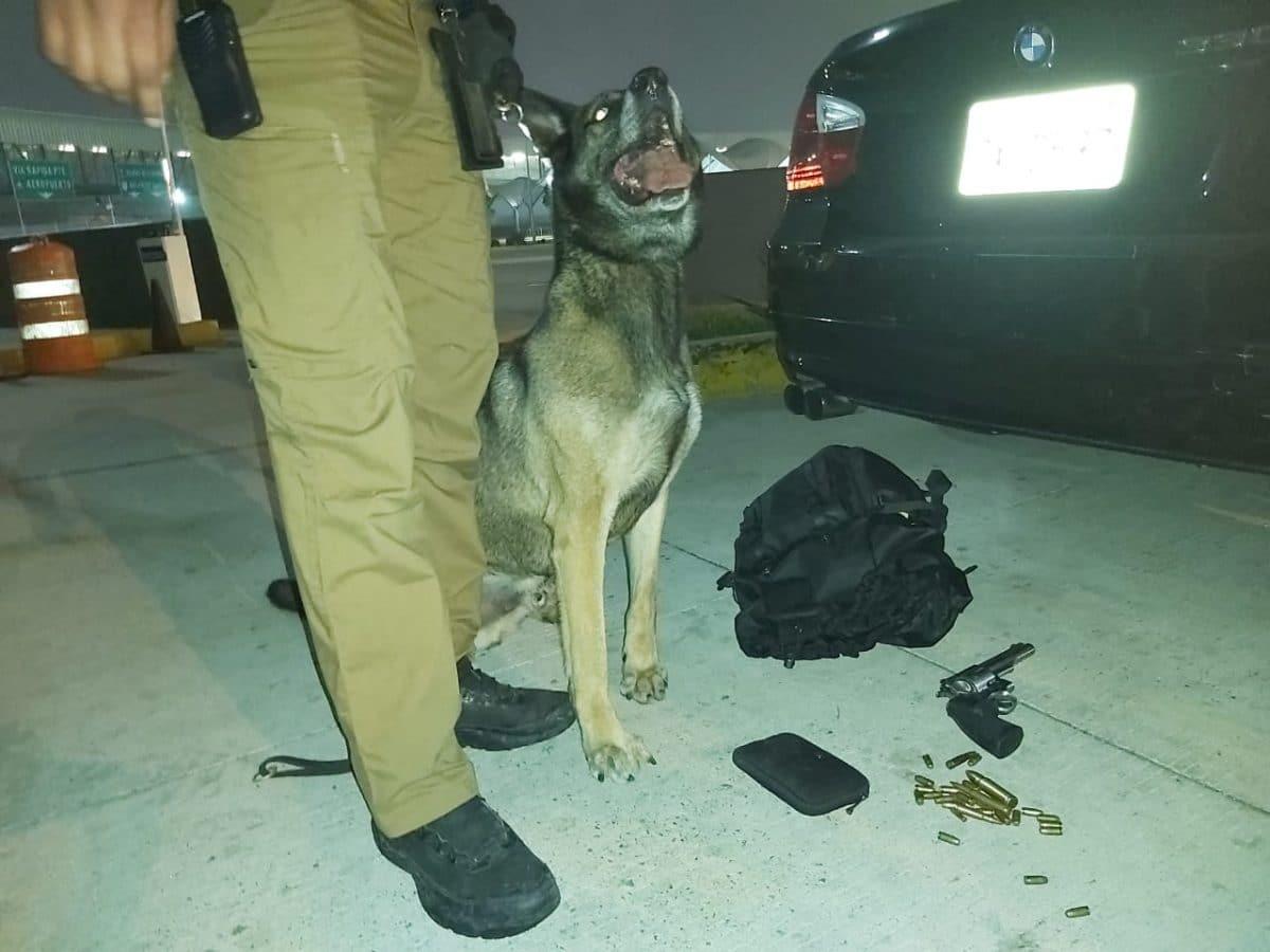 aduana de tijuana armas y droga