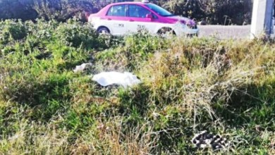 Photo of Hallan a niña muerta en carretera de Edomex