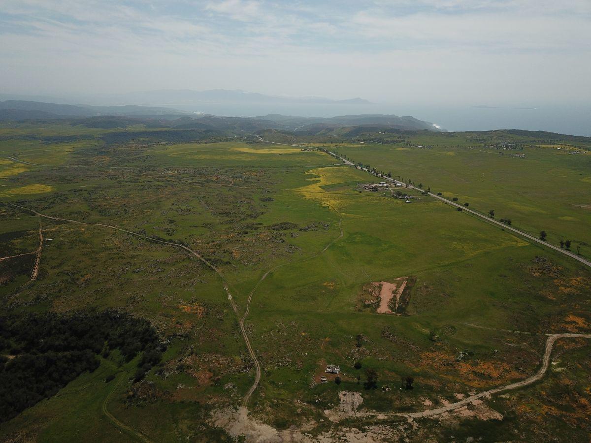 Detonará nuevo Aeropuerto comercio y turismo en Valle de Guadalupe