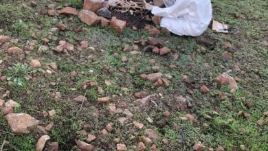 Photo of Familiares de desaparecidos hallan más restos humanos en Tijuana