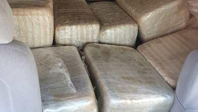 Photo of Abandonan casi media tonelada de marihuana