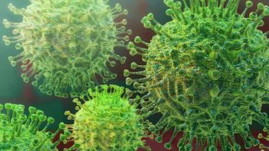 Se confirman dos casos de coronavirus a 20 kilómetros de frontera