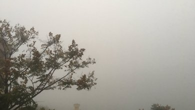 Photo of Fuerte descenso de temperaturas traerá lluvia