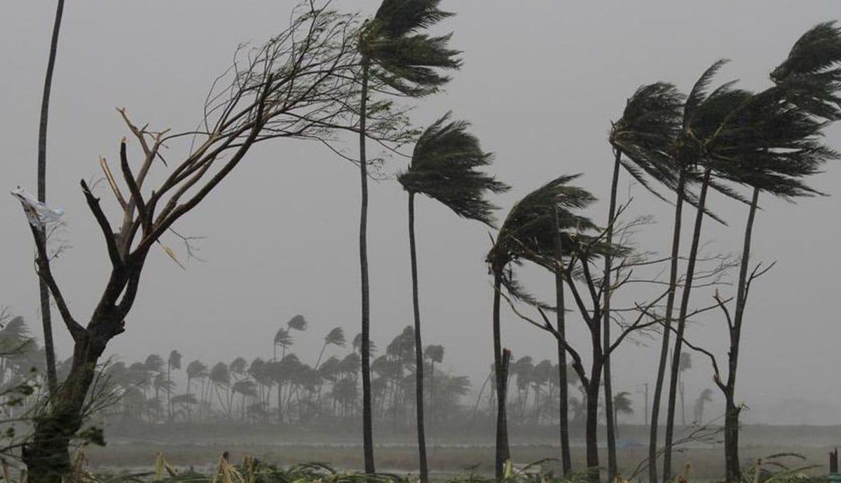 Impactarían seis ciclones a la República Mexicana