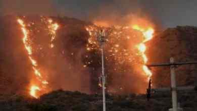 Photo of VIDEO: Voraz incendio consume hectáreas de maleza