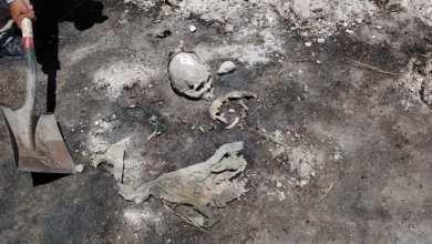 Photo of Tras llamada anónima localizan una osamenta semienterrada