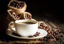 Photo of El Cafetal: Proyecto para impulsar productores mexicanos de café