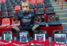 Photo of Xolos tiene bello gesto con aficionados fallecidos por Covid-19