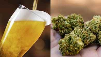 Cerveza-marihuana-becas-los-incentivos-para-la-vacunación-Covid-19