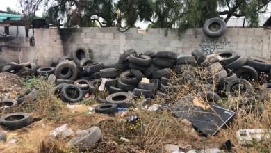 realizan-jornada-de-eliminacion-de-basureros-clandestinos-en-rosarito