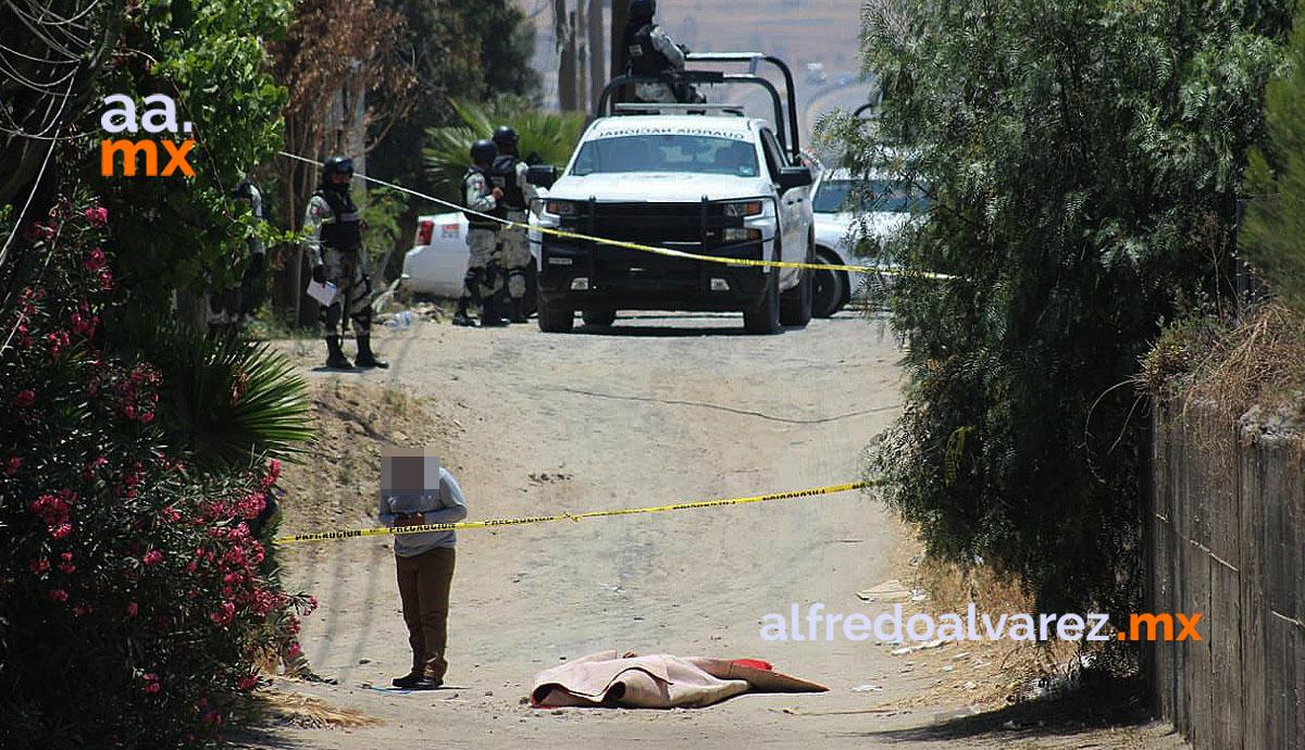 Dejan-cadáveres-envueltos-en-alfombra