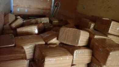 Confiscan-millonario-cargamento-de-droga-en-garita