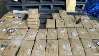 Decomisan-kilos-de-cocaína-en-contenedor
