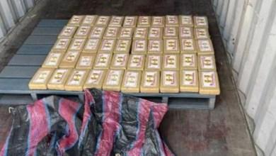 Confiscan-50-kilos-de-cocaína-proveniente-de-Rusia