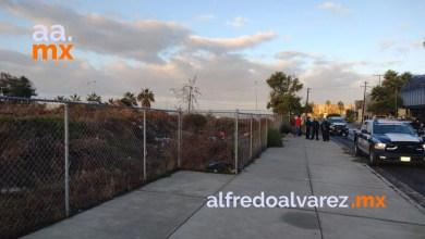 Liga-de-béisbol-de-Playas-de-Tijuana-condena-expropiación-de-campos
