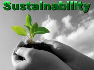 What Needs to Sustainability to Succeed?