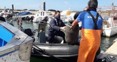 Polícia Marítima apreende um total de cerca de 57Kg de polvo em Portimão