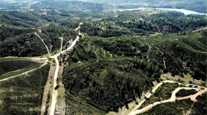 Concelho de Silves vai ter áreas integradas de gestão da paisagem