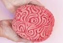 Serviço de Psicologia da UAlg vence Prémio de Boas Práticas da Ordem dos Psicólogos