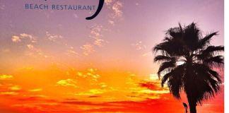 izzys beach bar