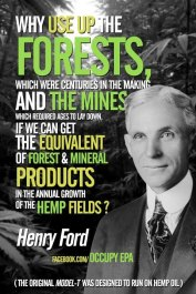 Henry Ford chose hemp to work with, exclusively