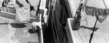 Kashah d'Alger, terrasses, 1960