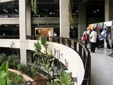 cette étage est un étage fréquenté par des adultes 25 ans a 96 ans rarement par des jeunes car il y'a 10 agences de voyages, plusieurs magasins d'électroménager et des
